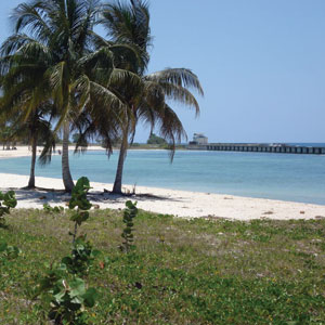 Picture of PLAYA GIRON